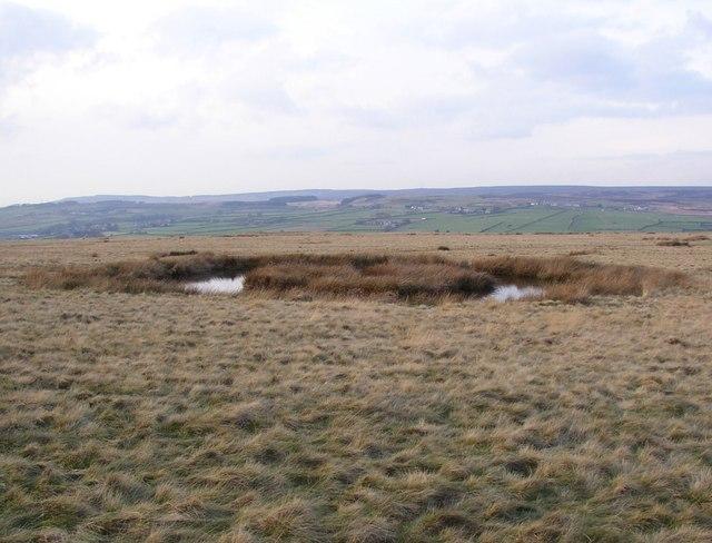 Round pond, Baildon Moor