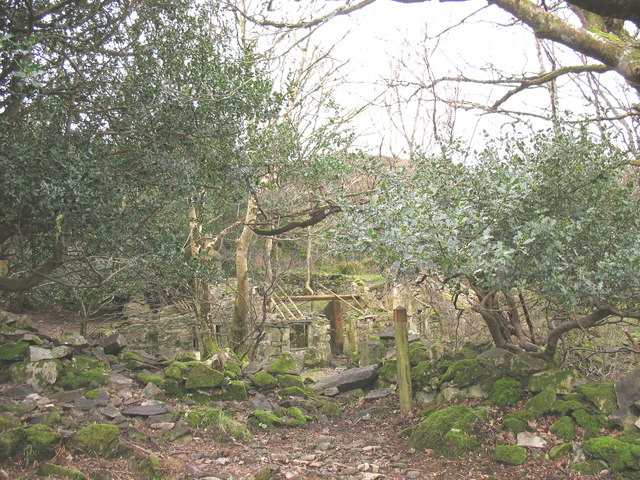 First glimpse of the ruins of Plas Tirion
