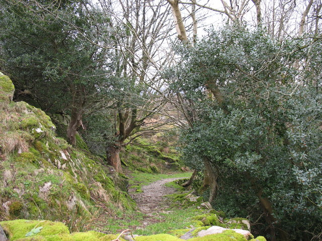 The Clwt-y-bont to Fachwen path behind Plas Tirion