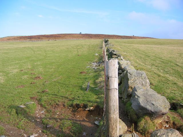 Dry stone wall on Moel yr Henfaes