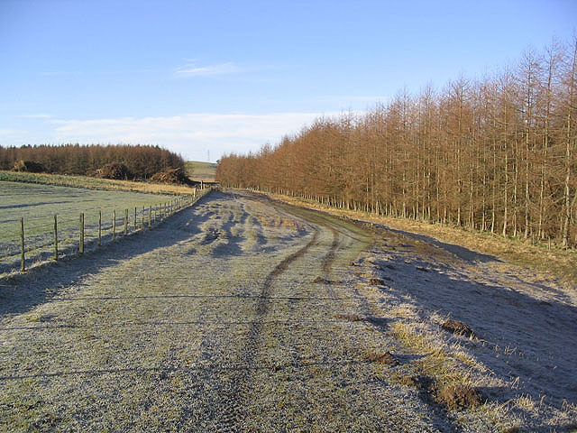 Farmland and plantations