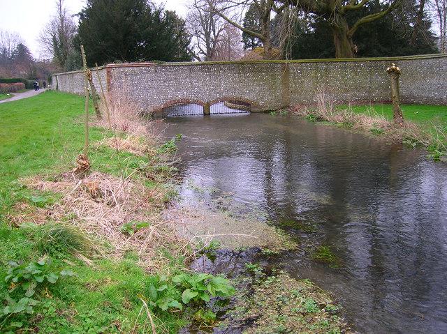River Lavant Enters West Dean Park