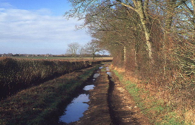 Abingdon Lane