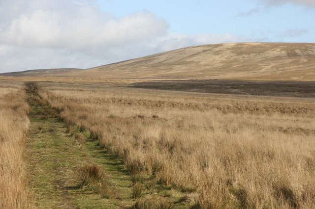 Unfenced moorland track