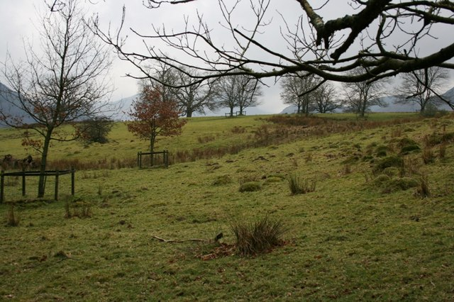 Field West of Aira Force