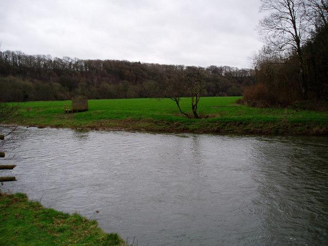View across the Torridge from Halsdon