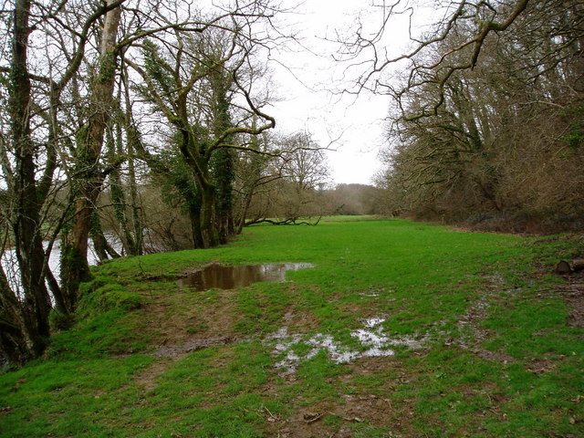 View of the Torridge from Halsdon