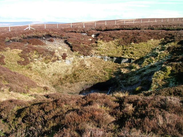 Large Shake Hole on sideof Bink Moss