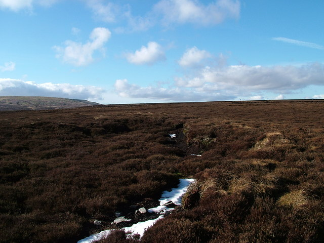 Grouse Moor below Long Crag