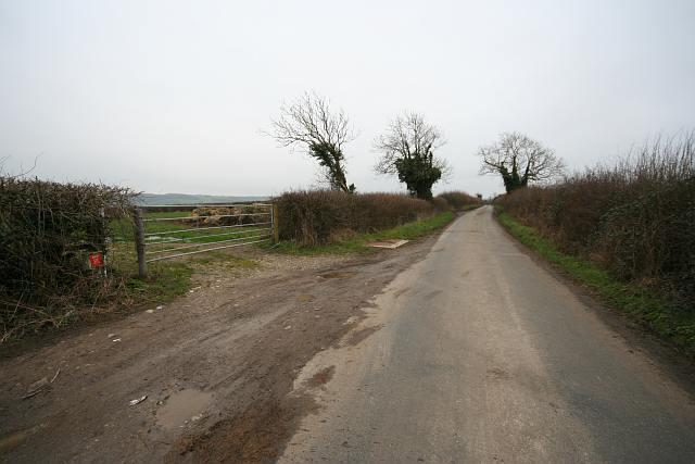 Rookery Lane