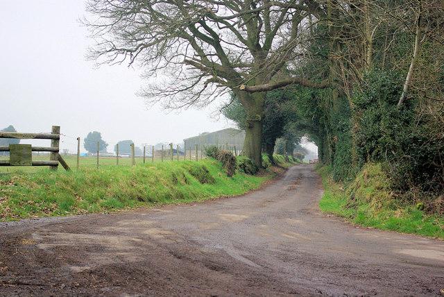 Drive to Madam's Farm
