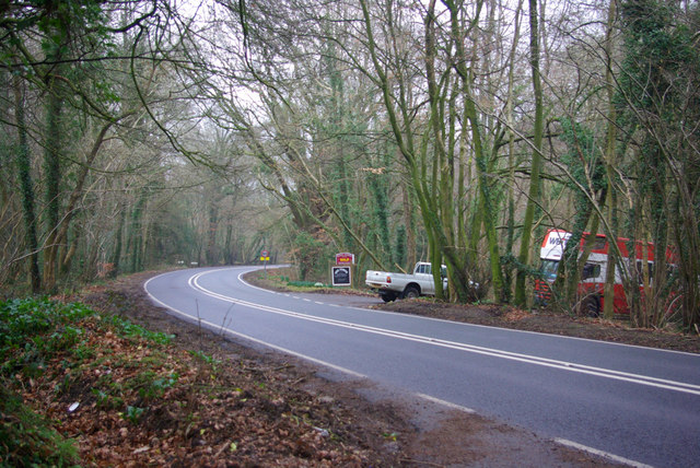 Bend on A286, Henley Common