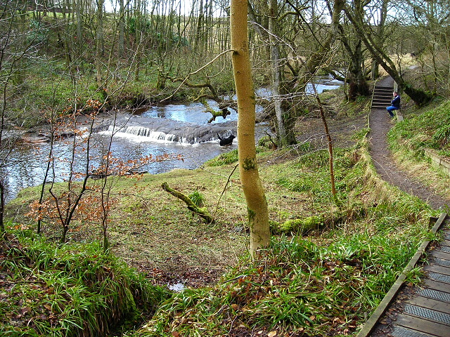 Calder Water, East Kilbride