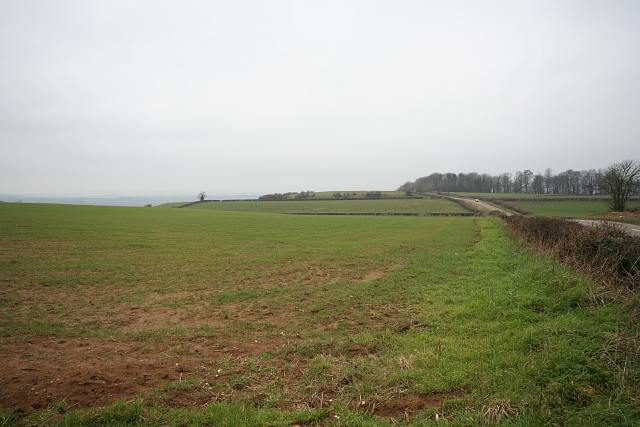 Hinton Hill