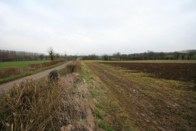 Fields and Lane