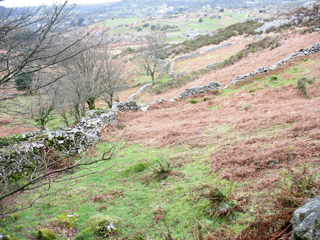 The old hay meadows of Bron-y-gadair, now bracken infested