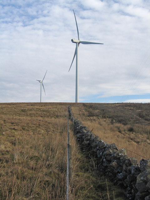 Trees down Turbines up