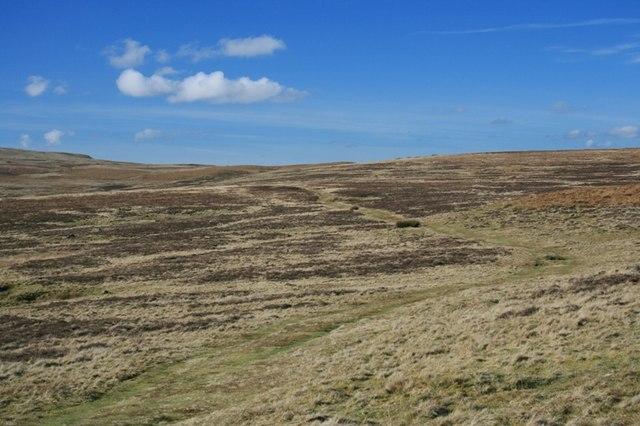 Track, Tarn Moor