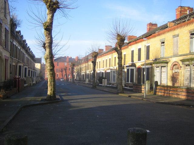 Liverpool: Ducie Street, Princes Park, L8