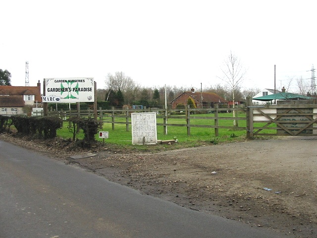 Garden nursery on Stodmarsh Road