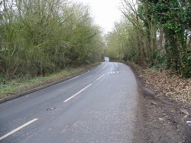 Looking S along Moat Lane