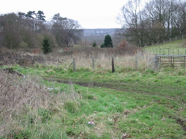 View N from Well Lane
