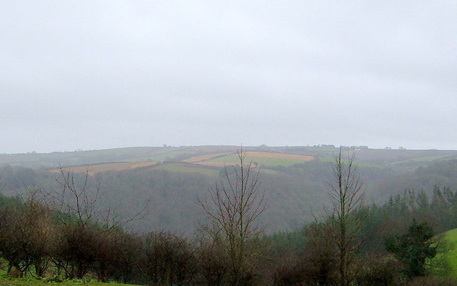View across Valley to Carcoe Woods