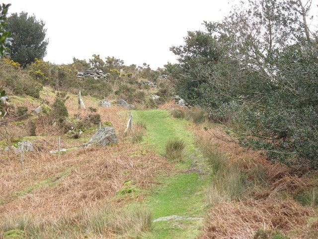 The Clwt-y-bont path west of Rhianfa