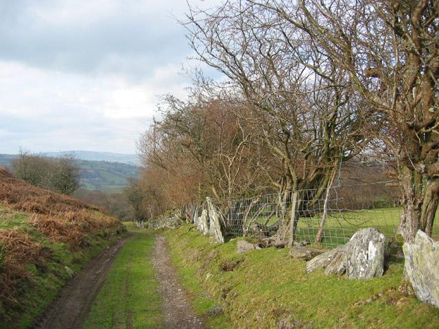 Split stones in field boundary