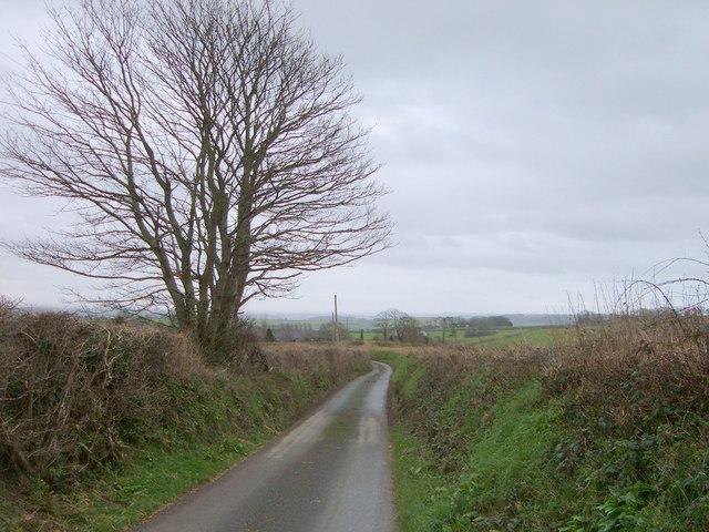 Road to Wilton Farm