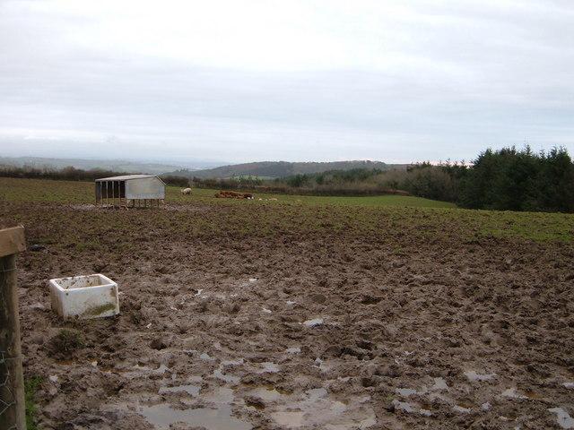 View over Muddy Fields