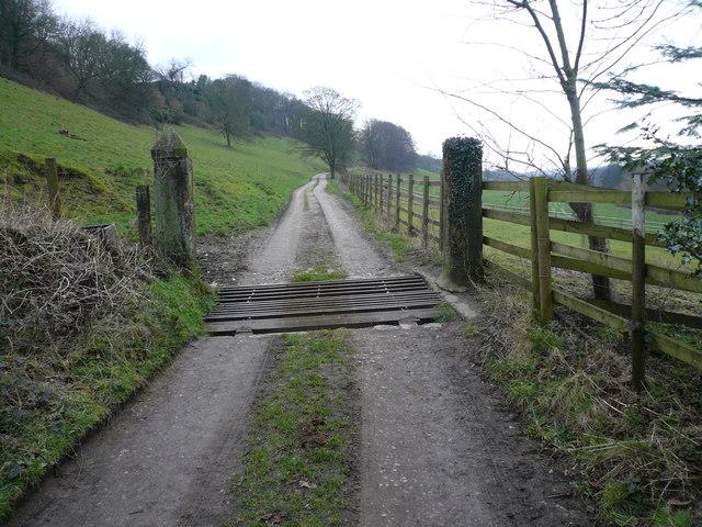 Back Lane - Cattle Grid