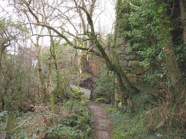 Footbridge  over Afon Caledffrwd below Melin Sam