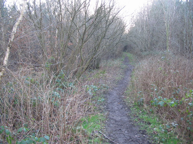Footpath through Warwick Moor Wood.