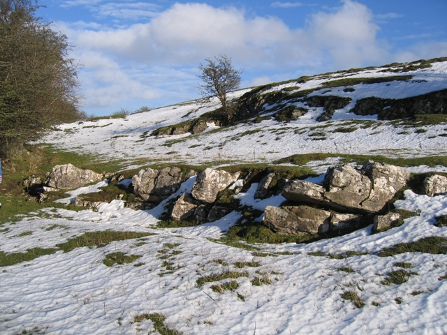 Limestone Pasture above the River Alyn