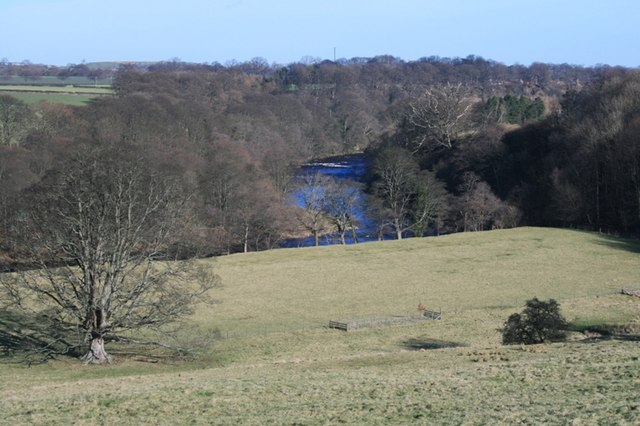 River Tees From Mortham
