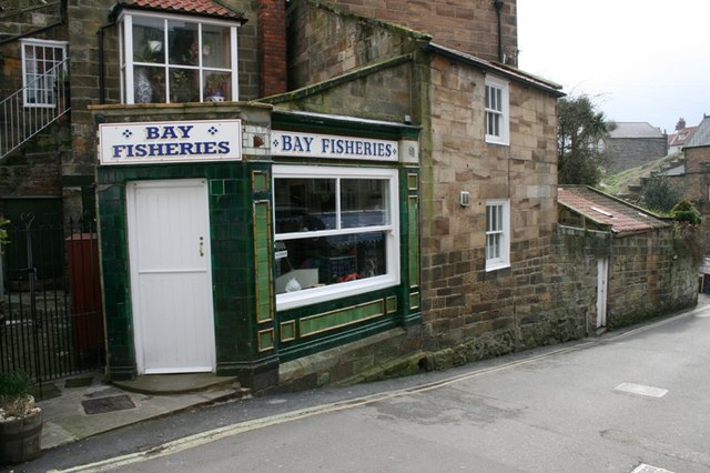 Bay Fisheries