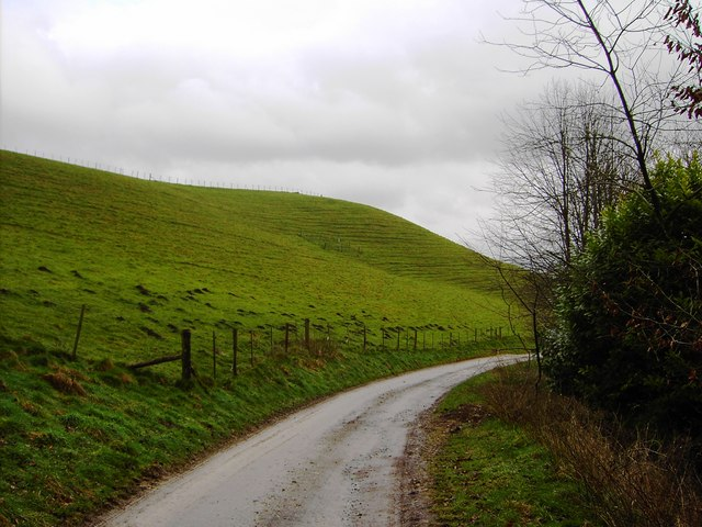 Byway and lynchets, near Shoulder of Mutton plantation, Hackpen Hill