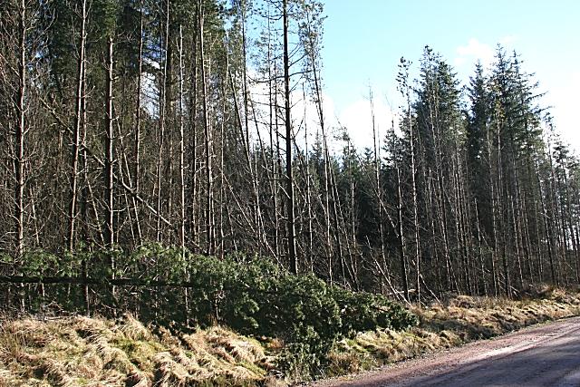 Natural Barrier?