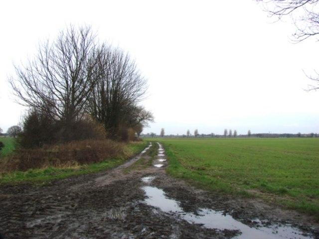 Track over farmland, Kellfield