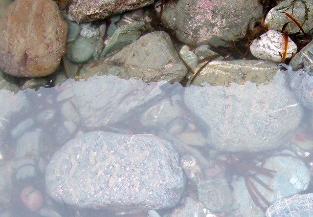 Close up of rock Pool