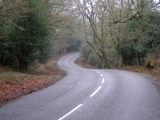 Twisty section of the Beaulieu Road near Pig Bush, New Forest