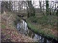 SJ8684 : Spath Brook, Handforth, Cheshire by Terry Walsh