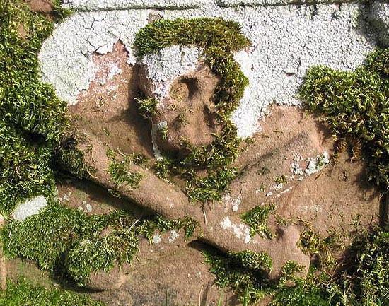 Gravestone detail in Ashkirk Church graveyard