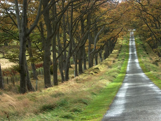The Road down from Bavelaw Castle to Redford Bridge