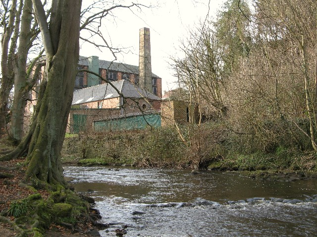 Water of Leith at Currie