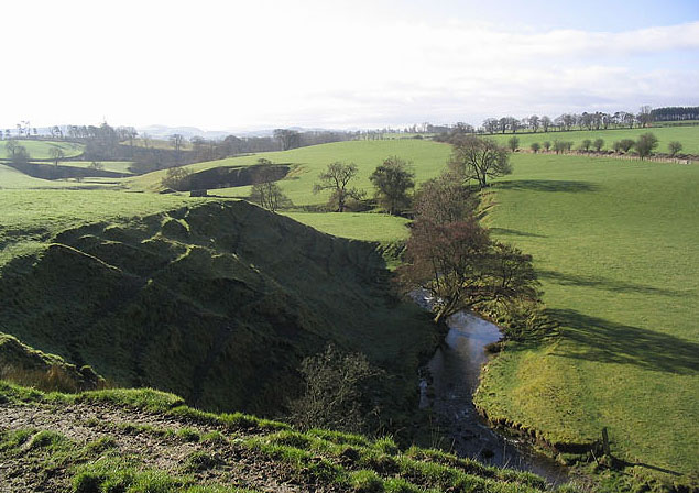 Pasture fields at Hassendean
