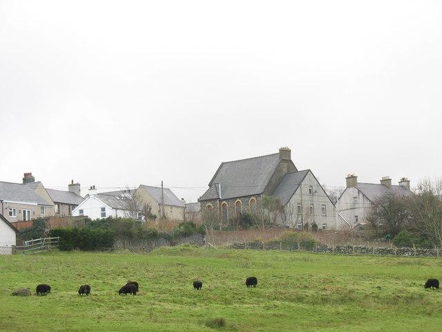 Black sheep below Capel Libanus