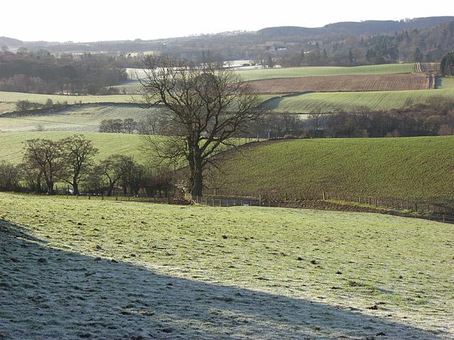 Farmland, Graystale