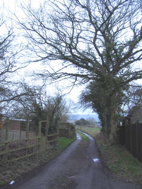Bridleway to Corsley Church